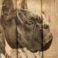 artwork on wood on the fence digital by judy wood