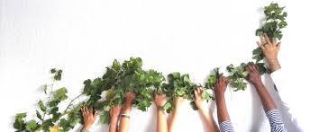 lexisnexis bee certificate about vine recruitment u2013 jobs in boland vine recruitment