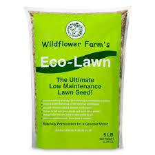 wildflower farm u0027s eco lawn grass seed 5 lb eartheasy com