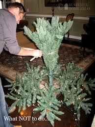 How To Put Lights On A Real Christmas Tree Put Lights On A Christmas Tree Home Design Inspirations