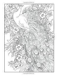 peacock coloring pages for adults creative peacock designs