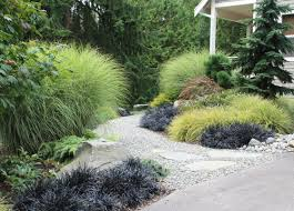 add softness light and movement with ornamental grasses