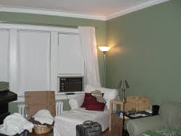 Sage Green Living Room Green Walls In Living Room Paint Wallsgreenating Advice Rooms With
