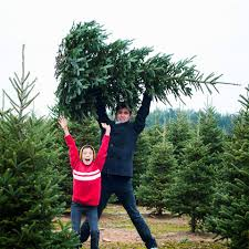 lil u0027 grandfather christmas tree farm home facebook