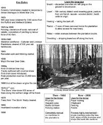 sherwood pines u2013 clipstone forest sherwood forest information