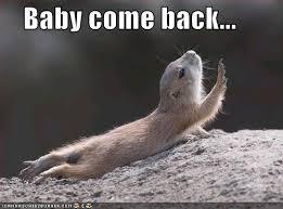 Meme Bebek - 20 baby come back memes you ll find handy sayingimages com