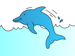 drawings of dolphins for kids