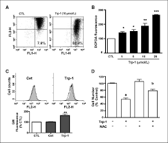 a gonadotropin releasing hormone ii antagonist induces autophagy