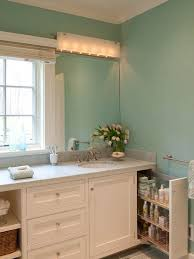 Countertop Cabinet Bathroom Pull Out Cabinet Bathroom Ideas Houzz