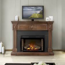 Napoleon Electric Fireplace Napoleon Vs Dimplex Electric Fireplace Matakichi Com Best Home
