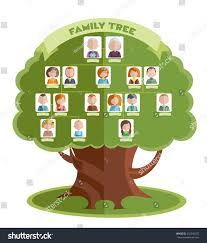 family tree template portraits relatives place stock vector