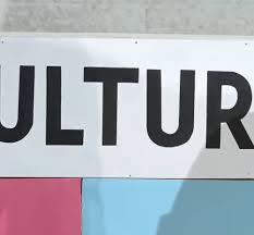 siege social cultura plataforma c
