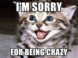 Memes About Being Sorry - i m sorry for being crazy happy kitten meme generator