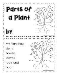 my parts of a plant bookletworksheets