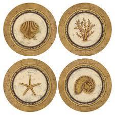 assorted seashells assorted seashells sandstone coasters