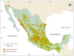 Co Surface Management Status Del Norte Map Bureau Of Land Management by Sustainability Free Full Text Potential Of Vertical Hydroponic