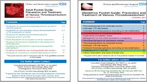 a hospital u0027s venous thromboembolism prevention programme in the uk