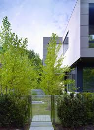 Define Tree Stunning Toronto Home With An Arty Staircase And A Comfy Office