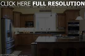 Paint Inside Kitchen Cabinets by Kitchen Cabinets For Less Port Coquitlam Tehranway Decoration