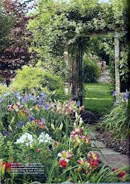 224 best plant ideas for house u0026 yard images on pinterest