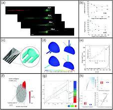 biomaterials and computation a strategic alliance to investigate