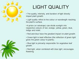 light and plant growth plants and light ppt video online download
