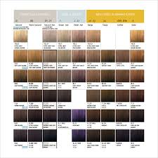 hair colour download sle hair color chart 8 documents in pdf