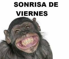 Meme Viernes - memes frases im磧genes de viernes en quebolu