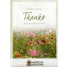 wildflower seed packets pin by bezanson on seed packages search image