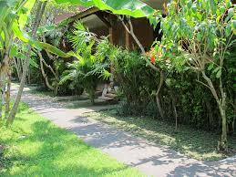 bali bumi ayu bungalow sanur bali hotels