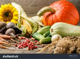 cranberry veggies thanksgiving stock photo 499683544