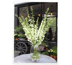 Large Floor Vases For Home Flower Arranging By Vase Goop