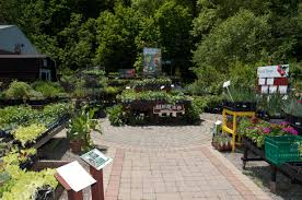 pennsylvania garden center pittsburgh pa best feeds garden