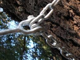 Building A Zip Line In Your Backyard by Zipline Tips