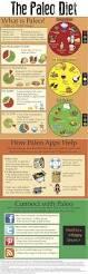 best 25 paleo diet ideas on pinterest paleo paleo recipes and