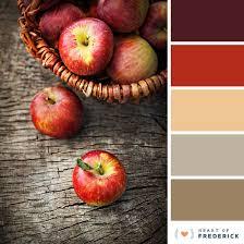 color palettes frederickweddings