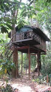 our jungle house hotel khao sok national park thailandia the