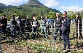 chambre d agriculture de savoie chambéry viticulteurs et arboriculteurs vont devoir faire au gel