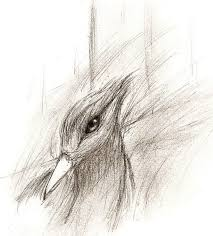 mockingjay sketch by wolfhorseluvr12 on deviantart