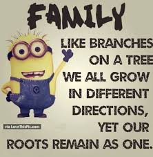 25 best family minion quotes