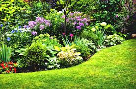 small flower gardening for beginners garden ideas plus hd image