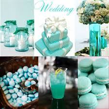 Tiffany Color Party Decorations 66 Best Tiffany Blue Party Ideas Images On Pinterest Tiffany