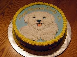 dog birthday cake dog themed birthday cake cake pictures