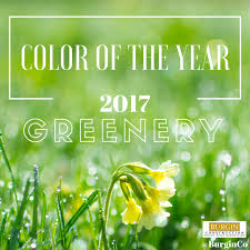 pantone color of the year 2017 happy renew year burgin construction inc