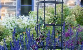 pergola iron trellis panels momentous iron garden fence panels