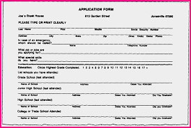 Form Resume Job by 5 Blank Resume Form For Job Application