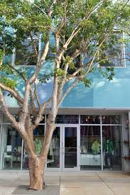 design district miami guide airbnb neighborhoods