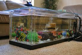 aquarium decoration ideas freshwater livingroom aquarium ideas for living room winsome decoration fish