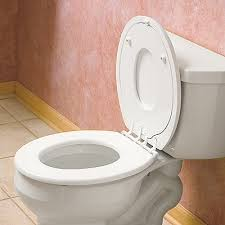 Potty Seat Or Potty Chair Best 25 Baby Toilet Seat Ideas On Pinterest Invention