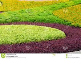 Landscape Flower Garden by Beautiful Ornamental Plants Tree Tropical Landscape And Flower